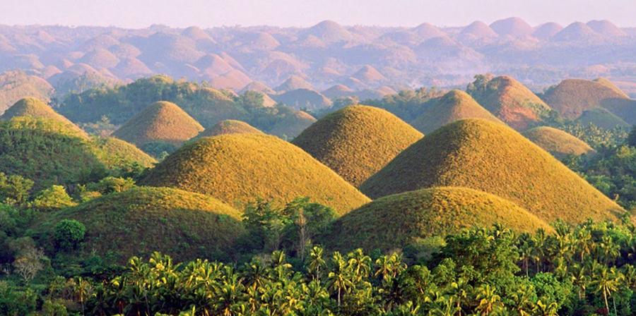 Wandering Bohol